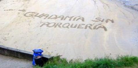 GUADAMIA SIN PORQUERIA