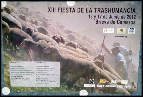 Fiesta de la trashumancia 2012