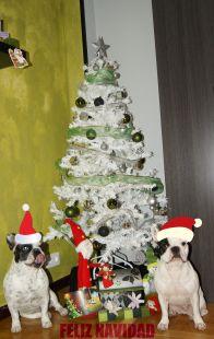 Tula & Curro Feliz Navidad