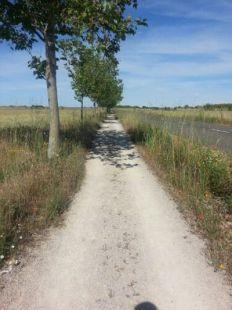 Camino de Santiago: Sahagun - Mansilla de Mulas 42kms
