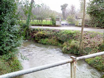 rio truchero