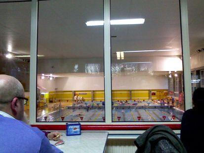 enbrion de natacion