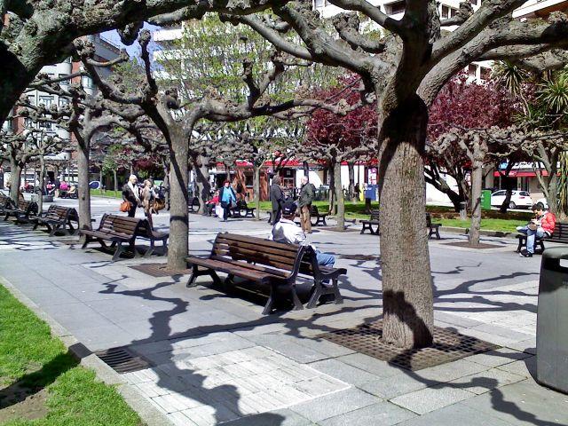 brotes de primavera