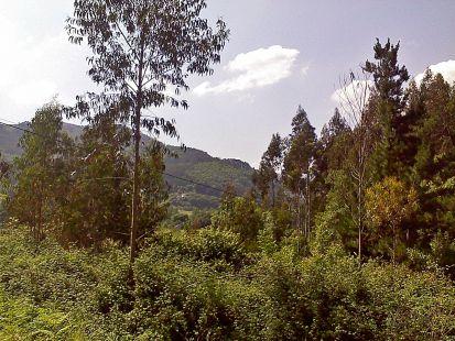 vista desde Nava