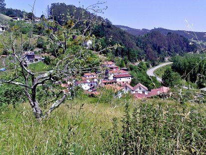 Corias ,Nava