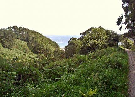 zona parque natural