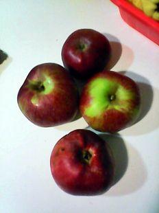 manzana de sidra